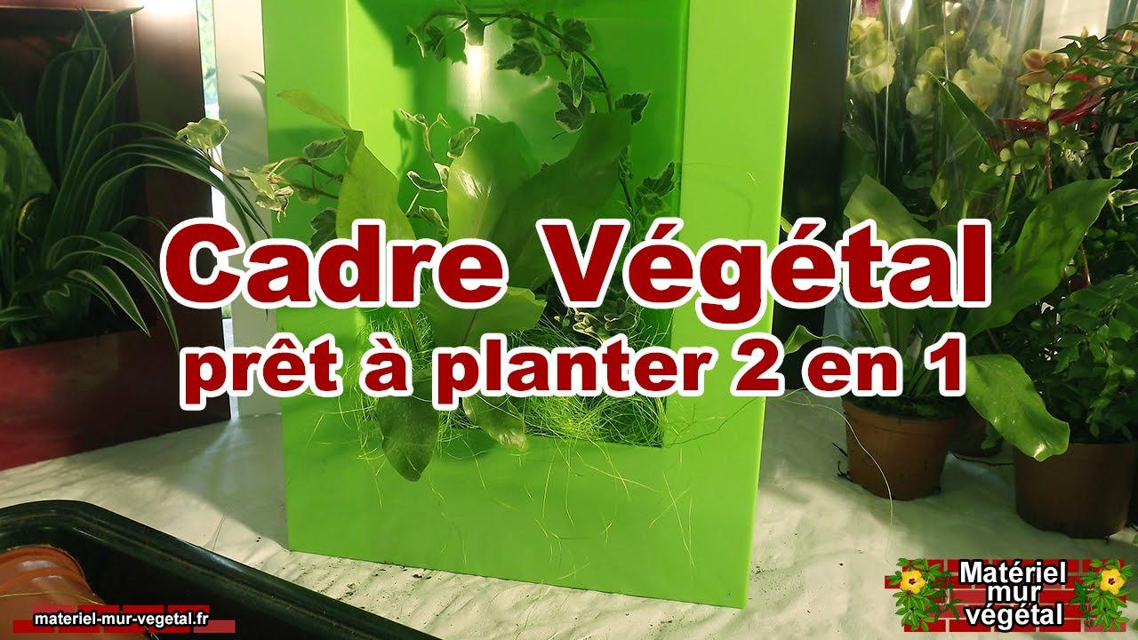 Cadre v g tal pr t planter 2en1 mat riel mur v g tal youtube - Cadre vegetal jardiland ...