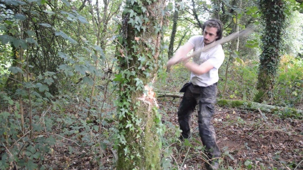 abattage arbre hache