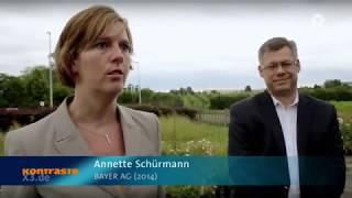 """Das große Bienen- und Insektensterben - """"Dank"""" BAYER & Co. - Neonicotinoide"""