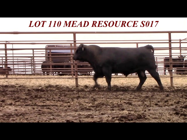 Mead Farms Lot 110