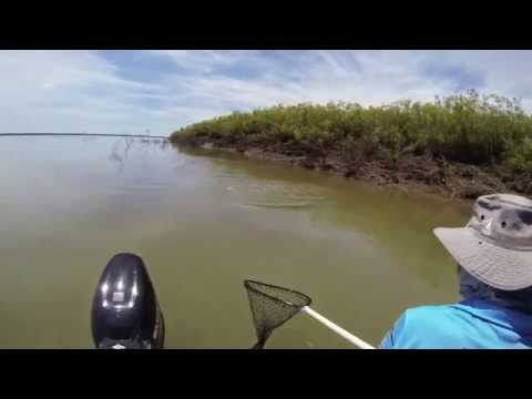 Barra Fishing In The Mouth Of The Mighty Ord River In The East Kimberley