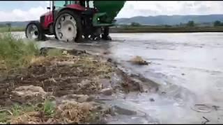 Çeltik ekimi TOPALOĞLU TARIM LTD ŞTİ Balıkesir Gönen