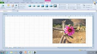 Excel 2010 Tutorial 1 - Getting Started And Free Download 60 Day Trial - Link