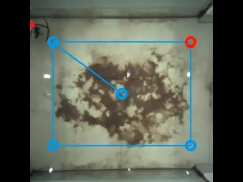 La primera tortuga controlada a distancia
