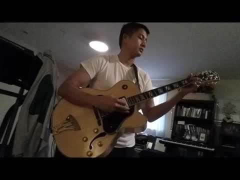 Washburn j6 hollowbody guitar
