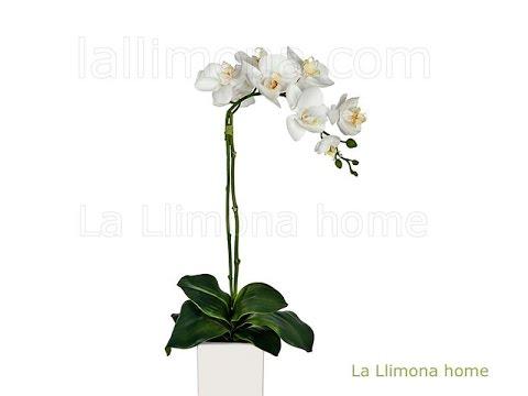 Flores artificiales orquideas artificiales blancas con for Plantas ornamentales artificiales
