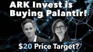 ARK Invest Just Bought Palantir Stock! | $20 Long-Term Price Target? | PLTR Stock: Explained!