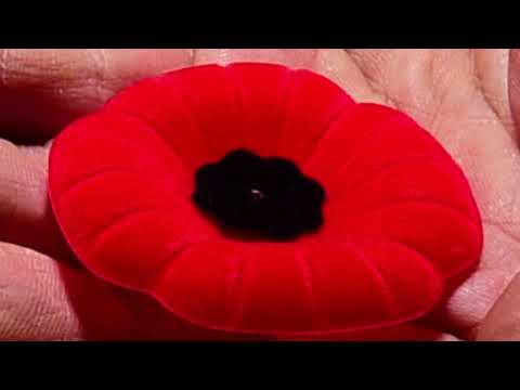The Poem Of John McCrae...   Remembrance Day