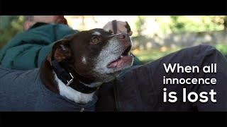 'When all innocence is lost' - short film