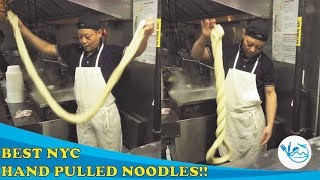 NYC Flushing Unbelievable HAND PULLED NOODLES | Hong Kong Food Court| You need to eat this!!