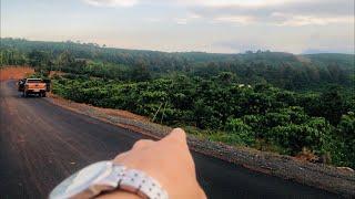 Bán 4566m2 đất vườn Bảo Lộc mặt đường nhựa 75m có bán lẻ từ 2 sào view đẹp giá còn rất tốt để đầu tư