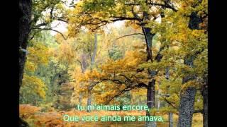 Tradução da música Quelqu'un M'a Dit - Carla Bruni