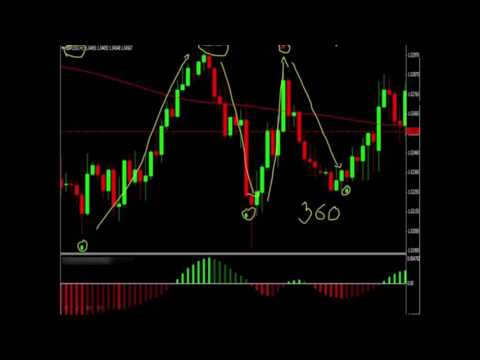 live-forex-signals-without-registration-daily-pips-machine