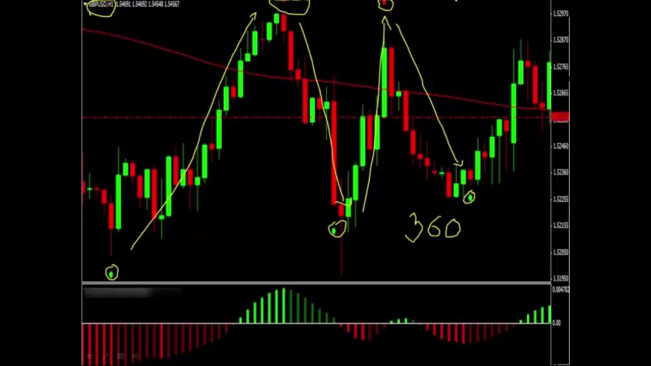 live forex signals without registration Daily Pips Machine - YouTube