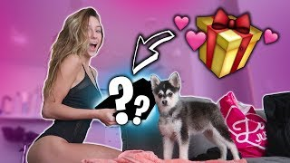SPOILING MY GIRLFRIEND WITH MORE GIFTS!!