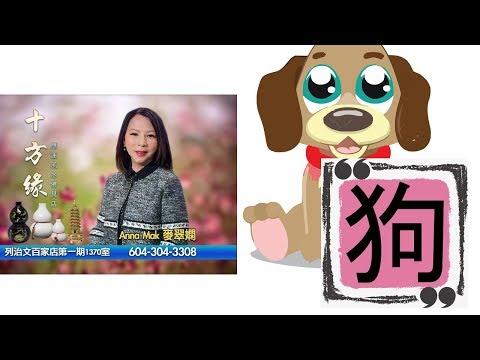 麥翠嫻師傅2019豬年生肖運程 - 「肖狗運程」