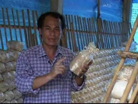Community-Based Integrated Rural Development (CBIRD), Thailand - Equator Prize 2002 Winner
