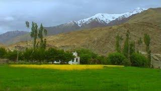 Ladakh, Nimmu village, Leh, farmland, Landscape, Jammu and Kashmir, India