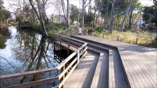 川越観光・自転車で巡る仙波河岸史跡公園【55歳からの生きがいサイクリング】