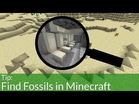 The Easiest Way to Find Fossils in Minecraft