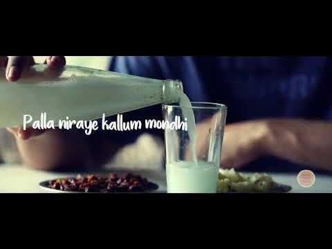 Adyaadi yeppo varum ninnammavan Maru pinne😘😘😘😘 Nadan pattu remix