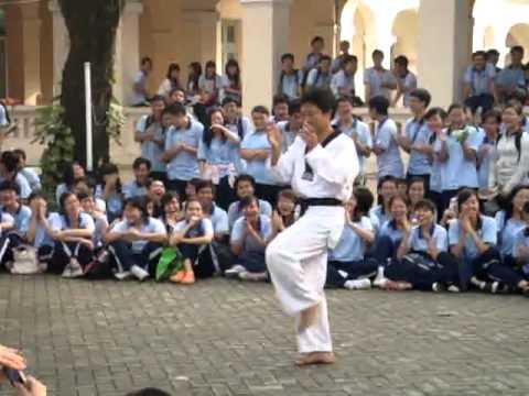 HLV Taekwondo nhảy Nobody