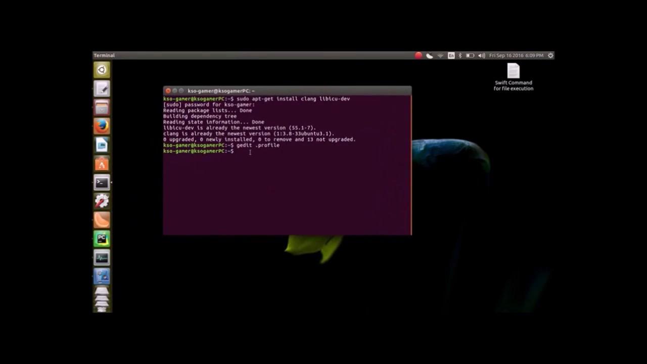 Run/Install Swift 3 0 on Ubuntu 16 04/Linux- In Easy Way