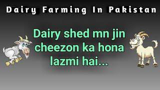 Dairy shed mn jin cheezon ka hona lazmi hai wo ye hain