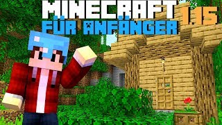 Minecraft 1.15 Neustart | Mine¢raft für Anfänger 1.15 | LarsLP