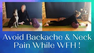 Yoga While You WFH - Avoid Back Pain & Neck Pain with Gentle Quarantine Yoga!