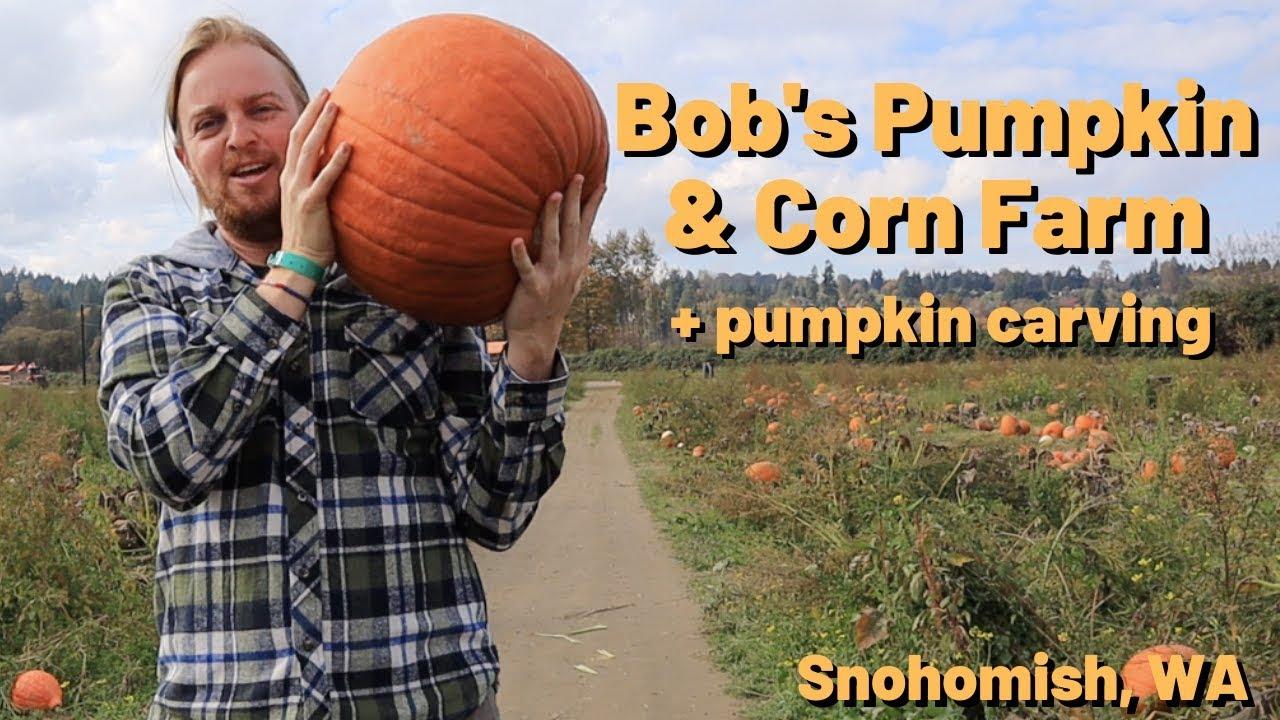 Bob's Corn & Pumpkin Farm - Seattle VLOG