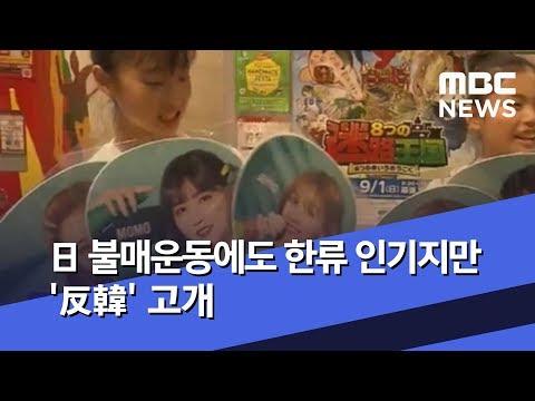 日 불매운동에도 한류 인기지만 '反韓' 고개 (2019.07.31/뉴스투데이/MBC)