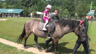 2014-06-28 Bałtów - Na koniu