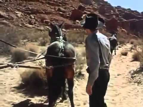 Western movies full length   A Man Alone 1955   best western