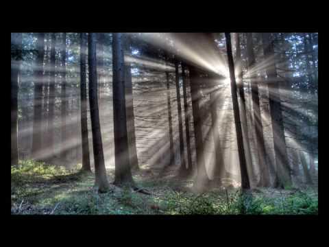 """Reflections of Earth"" by Gavin Greenaway"
