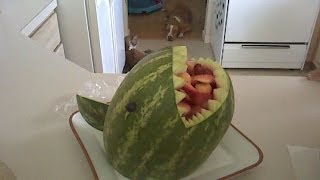 How To Make A Watermelon Shark !