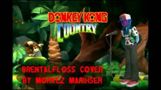 What if Donkey Kong Country HAD LYRICS? (Brentalfloss covered by Morkez Marihser)