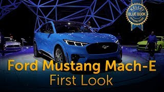 2021 Ford Mustang Mach-E - First Look