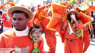 Treme Sidewalk Steppers Secondline Parade (2017)