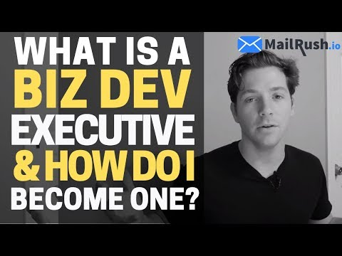 What is a Business Development Executive?