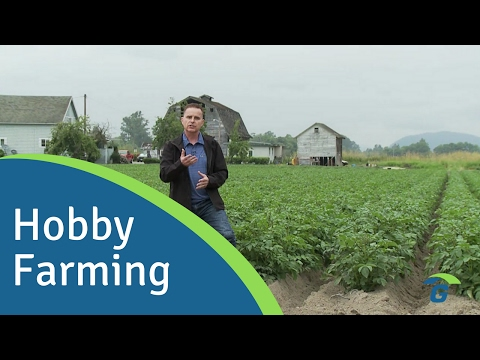 Farm Insurance: What You Need To Know