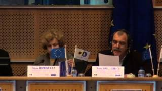 European Parliament: Beyond theories of weather modification: Intervention by Wayne Hall,