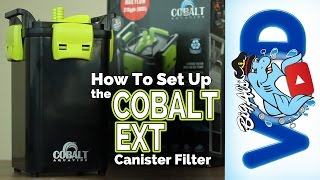 How To Set Up the Cobalt E-X-T Canister Filter | Big Al's