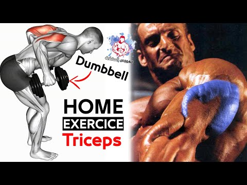 TRICEPS EXERCISES WITH DUMBBELLS AT HOME