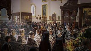 Канон на плач Пресвятой Богородицы. Читает митр. Арсений. 14.04.17г.