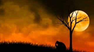 LOVE SONG  Zindagi Yeh Safar Main - Rahat Fateh Ali Khan - Dil Kabaddi