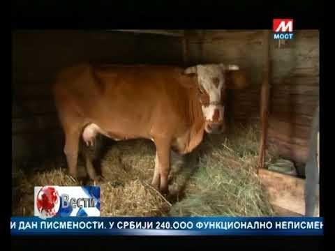 DNEVNIK TV MOST  08 09 2017
