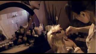 Hajhosszabbítás varrással, hőillesztéssel 3cm rövid hajból. www.hajpalota.hu