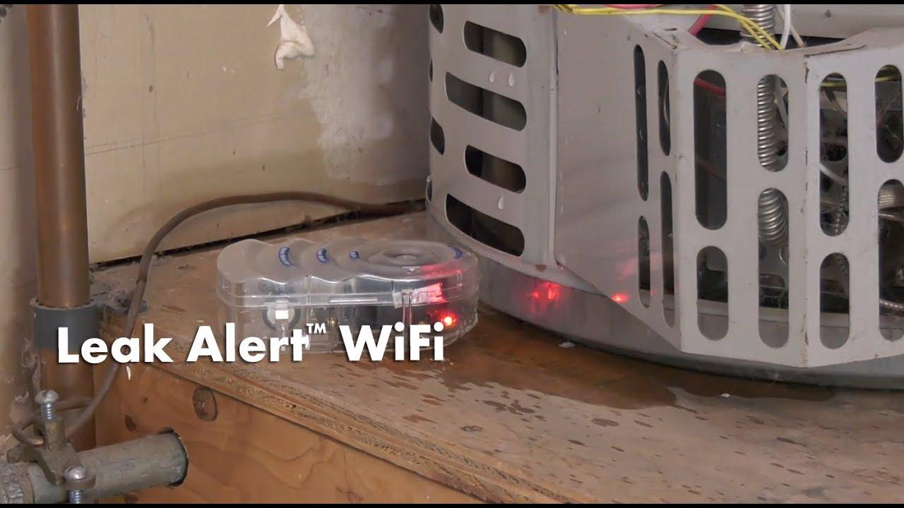 Water Leak Detector >> Zircon Leak Alert WiFi Smart Water Detector Sends Email Notifications - YouTube