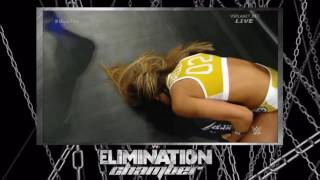 WWE Elimination Chamber 2015  Nikki Bella vs Paige vs Naomi   WWE Divas Championship Match   YouTube